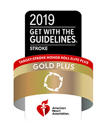 Gold Plus 2019 badge
